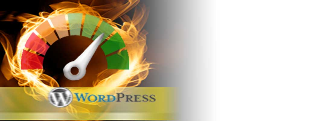 Aceleramos su Web en Wordpress